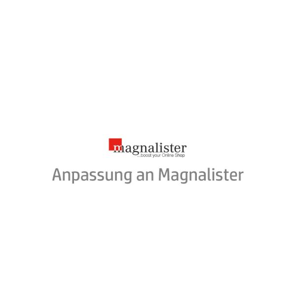 eBay Template Auktionsvorlage Anpassung an magnalister