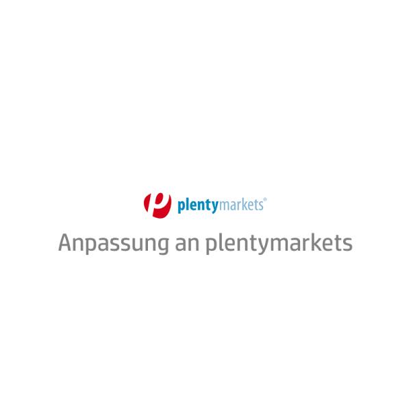 eBay Template Auktionsvorlage Anpassung an plentymarkets